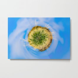 Green wheat - tiny planet Metal Print