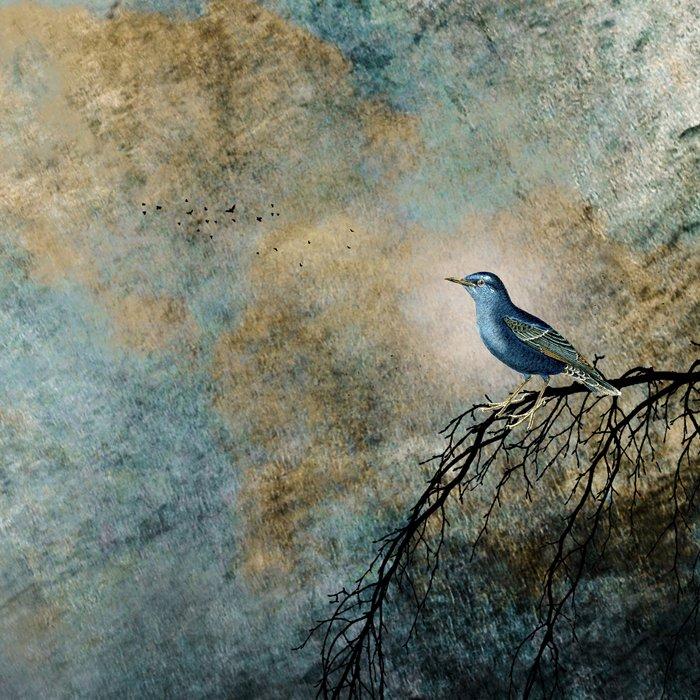 HEAVENLY BIRD II Leggings