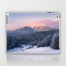 Mountain II Laptop & iPad Skin