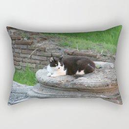 Archaeologist Cat Resting on a Roman Column Rectangular Pillow