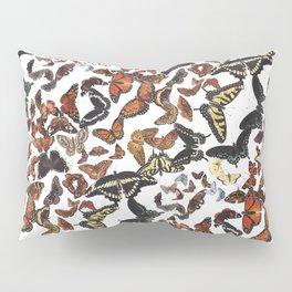 Butterflies of Maine Pattern Pillow Sham