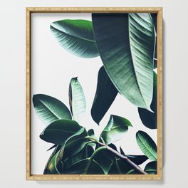 Ficus Elastica #26 #foliage #decor #art #society6 Serving Tray