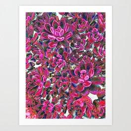 Floral tribute [red velvet] Art Print
