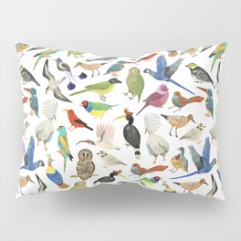 Endangered Birds Around the World Pillow Sham