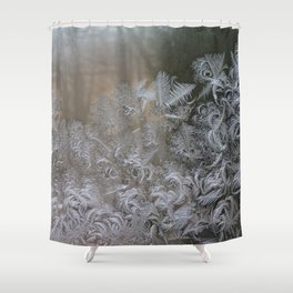 Frost in the morning Shower Curtain