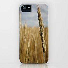 Wheat Field  iPhone Case
