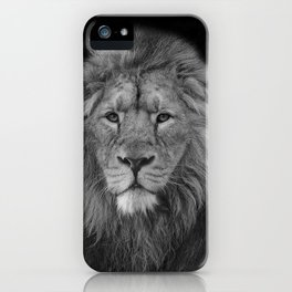 Asiatic Lion iPhone Case