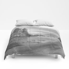 ROMANCE ON THE HORIZON Comforters