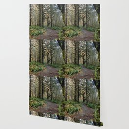 Rainforest Adventure II Wallpaper