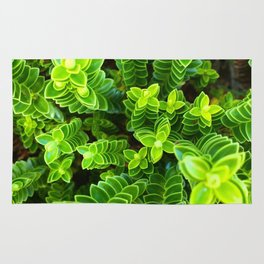 Green plant Rug