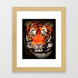 Tiger in the Shadows Framed Art Print