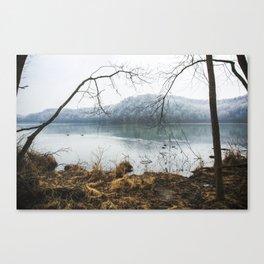 Radnor Lake in Summer Canvas Print