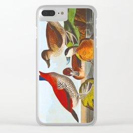 Ruddy Duck Clear iPhone Case