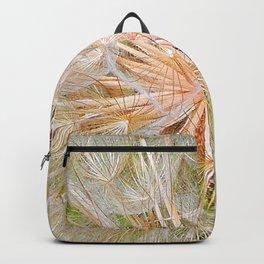 Inside the Dandelion Backpack