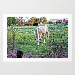 I See Cows Art Print