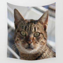 Beautiful Eyed Tabby Cat  Wall Tapestry