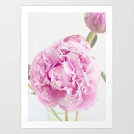 Fine Art Pink Peony Photography, Flower Art Print