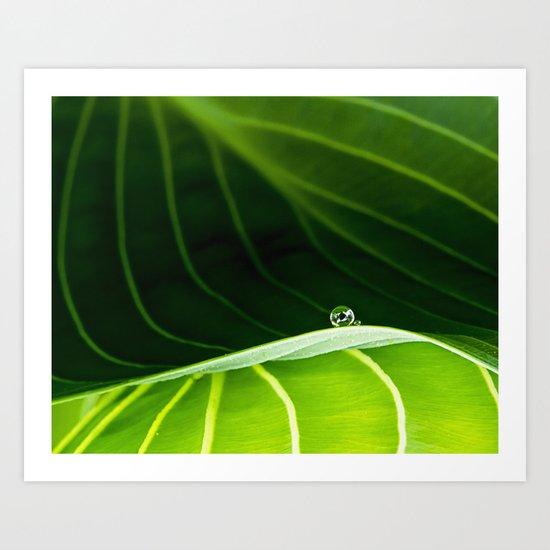 in green Art Print