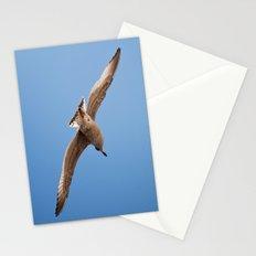pilgrim Stationery Cards
