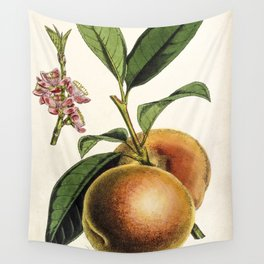 A peach plant - vintage illustration Wall Tapestry