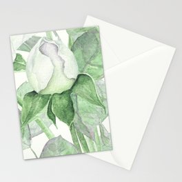 Bouquet Of Pastel Green Roses Stationery Cards