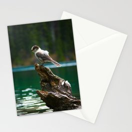 Grey Jay at Joffre Lakes Stationery Cards