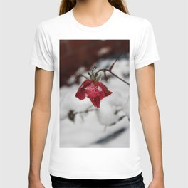 Red Rose Kissed by the Snow T-shirt