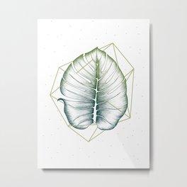 Geometry and Nature II Metal Print