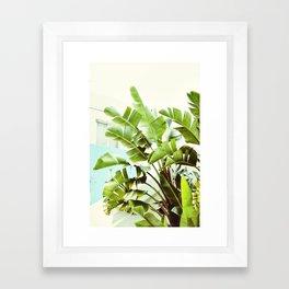 Banana Palms Framed Art Print