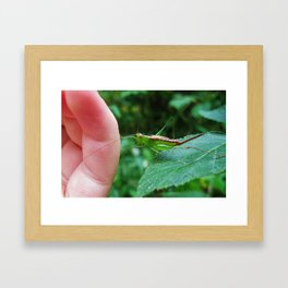 Connection With Nature--Animal Photography Prints Framed Art Print