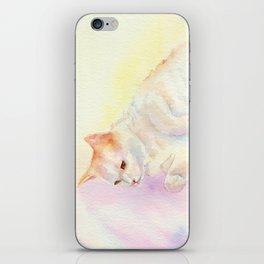 Playful Cat III iPhone Skin