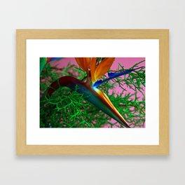 # 341 Framed Art Print