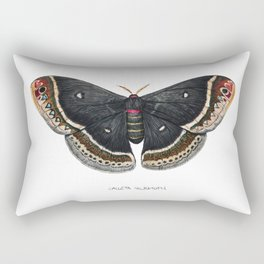 Calleta Silkmoth  (Eupackardia calleta) Rectangular Pillow