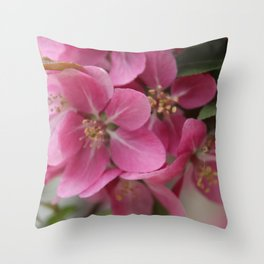 Spring Time Throw Pillow