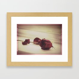 Fallen Petals, Dying Love Framed Art Print