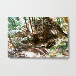 Which Way Did They Go? Metal Print