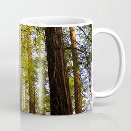 Within The Redwoods Coffee Mug