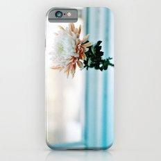 White and Pink Chrysanthemum iPhone 6s Slim Case