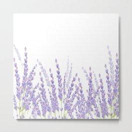 Lavender in the Field Metal Print