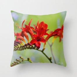 Lucifer Flowers Throw Pillow