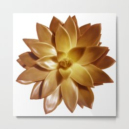 MINI GOLD SUCCULENT Metal Print