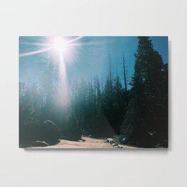 Among the trees. Metal Print