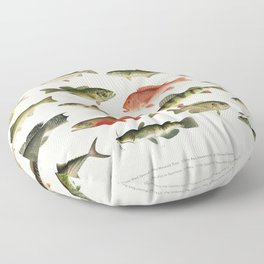 Illustrated North America Game Fish Identification Chart Floor Pillow