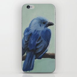 Blue-Grey Tanager iPhone Skin