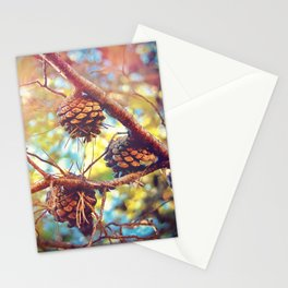 Autumn pine cones  #photography Stationery Cards