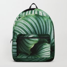 All about Leaves Backpack