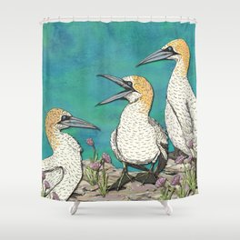 Gannets Shower Curtain