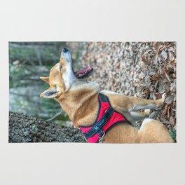 Shiba Inu yelling in the woods Rug