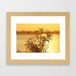 Coucher de soleil Framed Art Print
