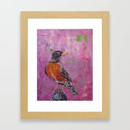 American Robin #5 Framed Art Print